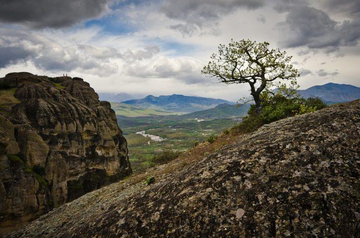 Meteora Lone Tree