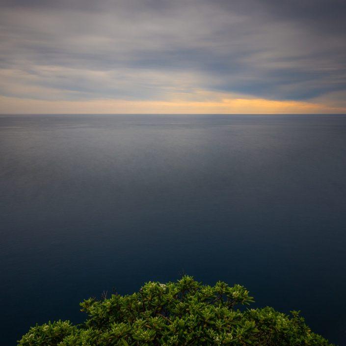 Portofino Green