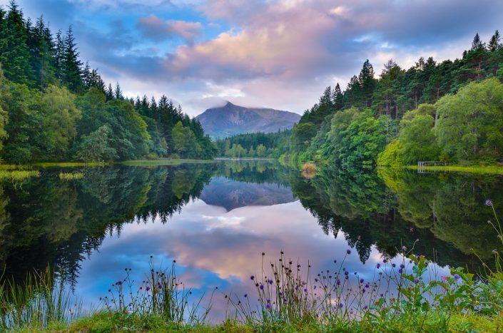 Flowery Glencoe Lochan
