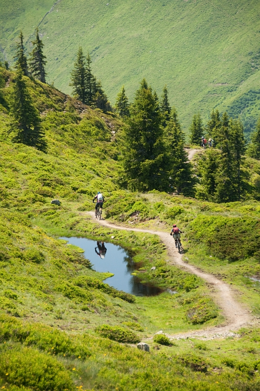 Riding the Singletrack