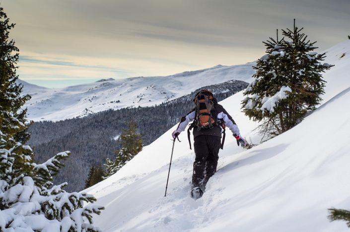 White winter exploration