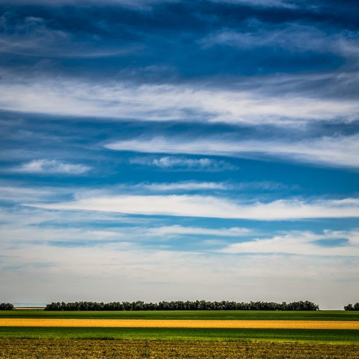 Sky over Fields