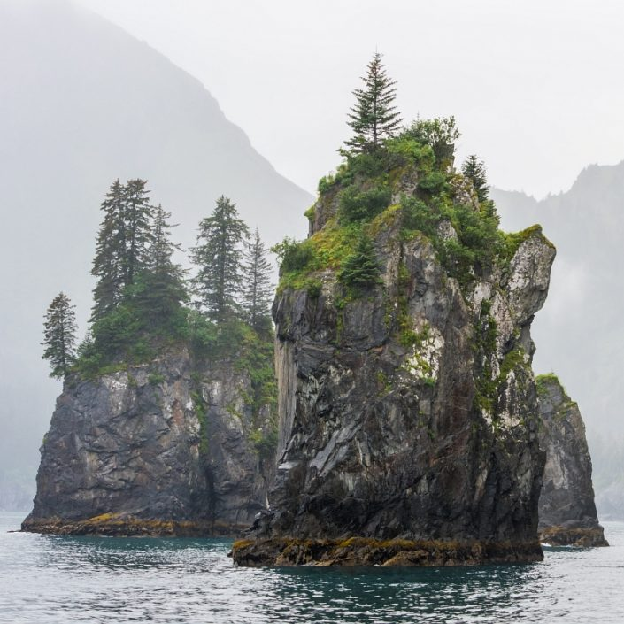 Sea Stacks in the Mist