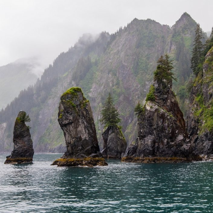 Kenai Fjords Sea Stacks II
