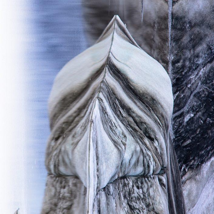 Hoffelljokull icy bird