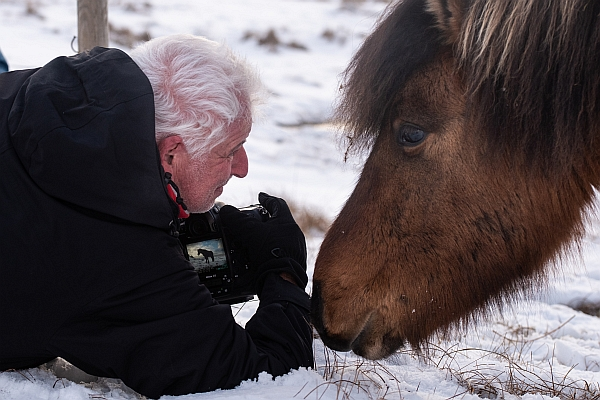 Of Men and Horses - Iceland Phototour