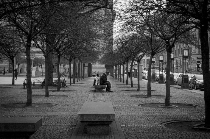 Berlin. Park. Man. Dog.