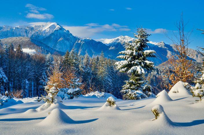 Bucegi Winter Wonderland