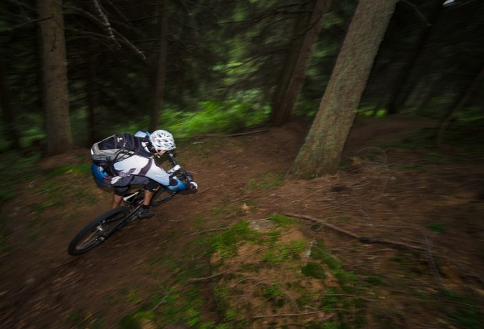Fast Turn in the Woods