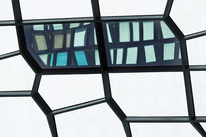 Harpa Inside Out